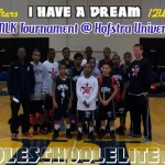 'I Have A Dream' MLK/NYC Rising Stars 12U Champions